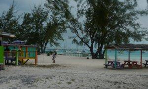 Beach bar at Hamburger Beach