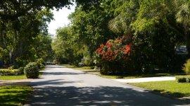 Lush gardens in residential street near marina