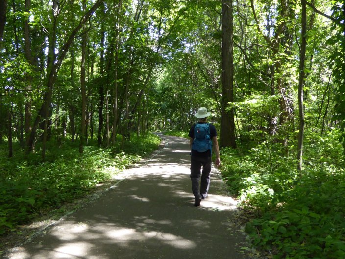 Multipurpose wooded trail