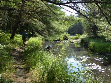 Hike to Artists Lake