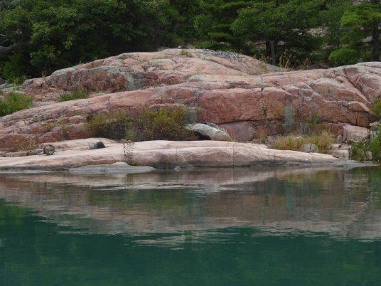 Pink granite of Thomas