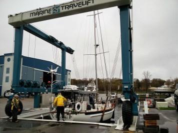 Steve leaps aboard...