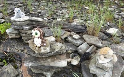 Grandkids Corner: Fossil Hunting