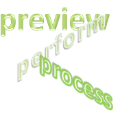 Preview, Perform, Process