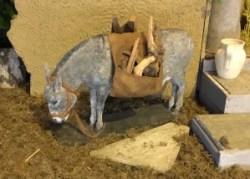 De ezel volgens Gerard Mathot