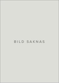 En resa i mindfulness : bli fri från stress och oro genom att leva i nuet