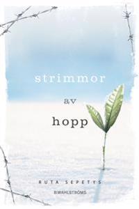 Omslagsbild Strimmor av hopp