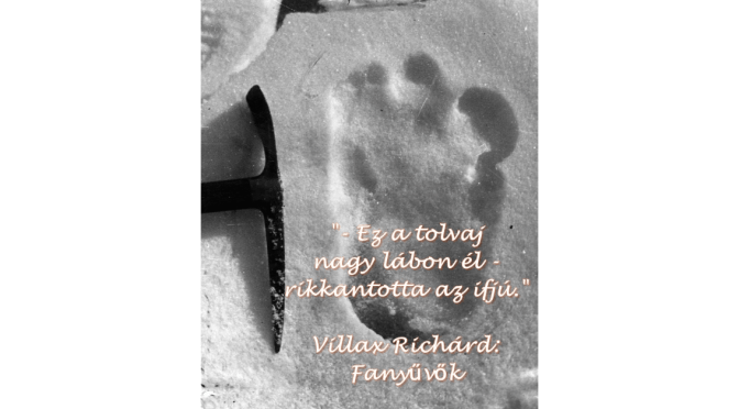 fanyuvok_villax-richard