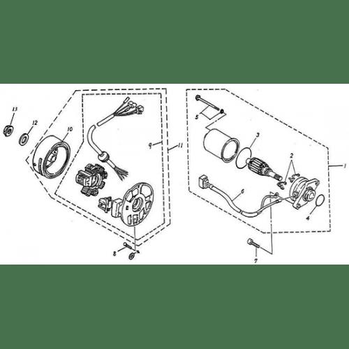 Generator, Starting Motor (Adly GTA-50 2010)