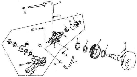 Oil Pump (Thunder Bike 50)