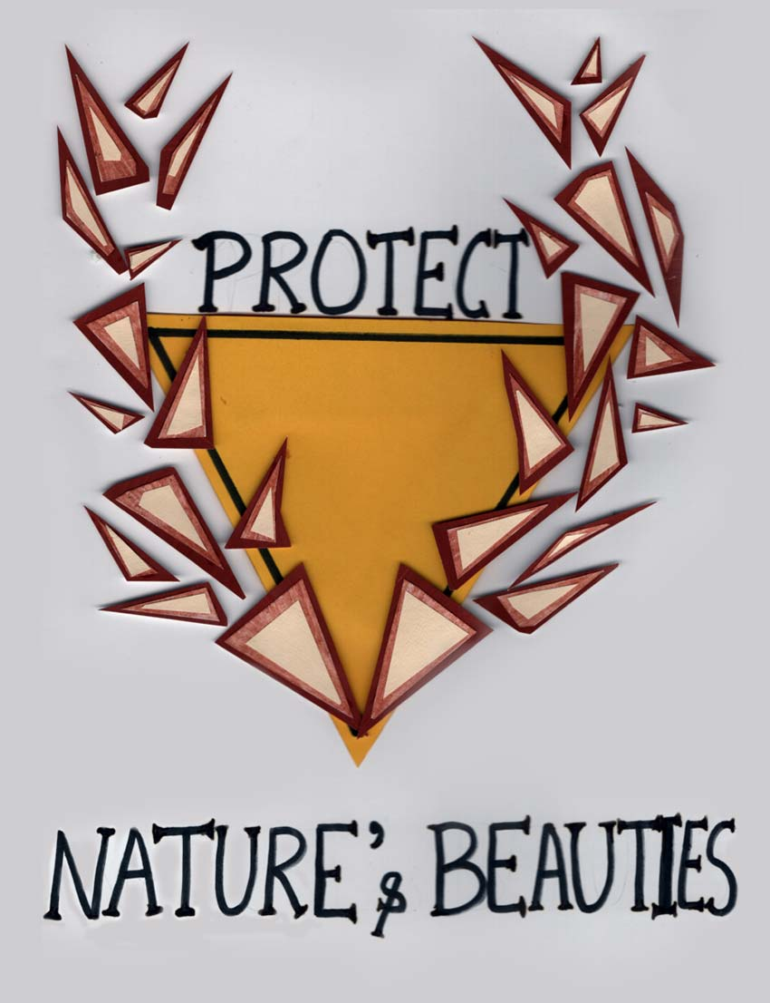 Shape Activity 4: Nature's Beauties