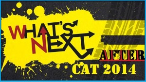 What after CAT 2014?Got Low CAT Scores