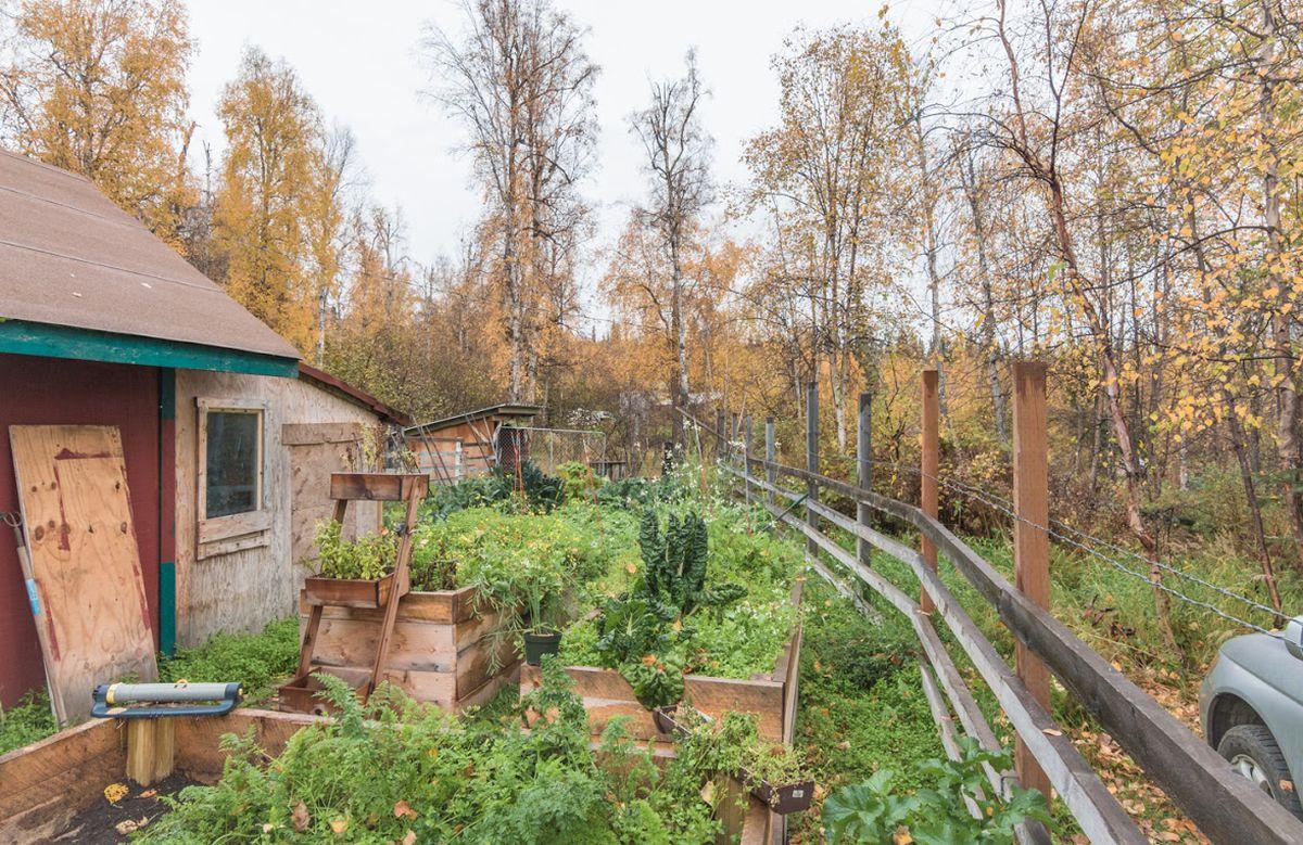 You Can Win An Interior Alaska Hobby Farm With An Essay