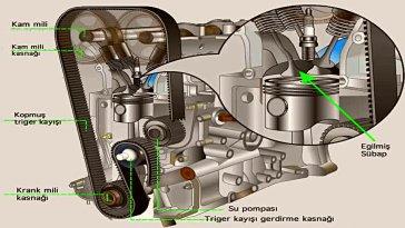 Triger kayışı, Motorlarda bulunan silindir kapağında , eksantrikler ile motor bloğunun en alt kısmında bulunan krank mili çıkıntısı arasında çalışan, kasnaklar ve rulmanlar yardımı ile boylamasına konumlanan kayışlardır. Diğer adı ile Eksantrik kayışı da denir. Araba motor özelliğine göre boylamasına olduğu gibi enlemesine bir şekilde de konumlanabilmektedir.