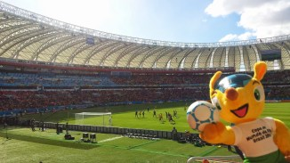 Fuleco vs Netherlands