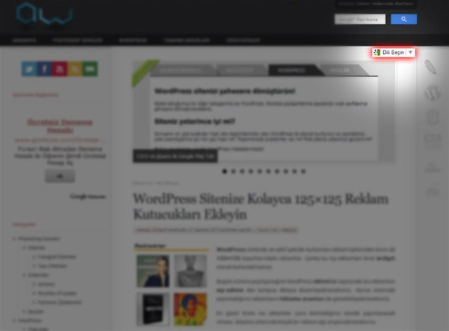 Adobewordpress.com Çeviri