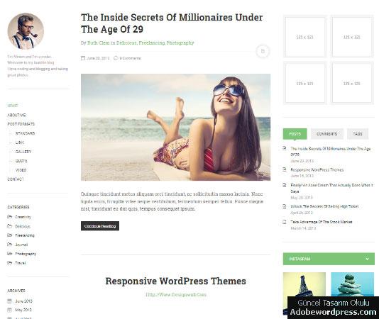 DW Minion WordPress Teması