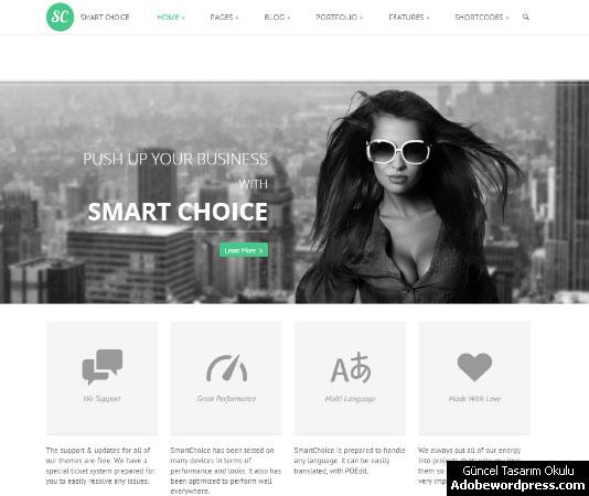 SmartChoice WordPress Teması