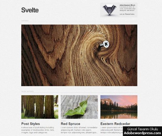 Svelte WordPress Teması