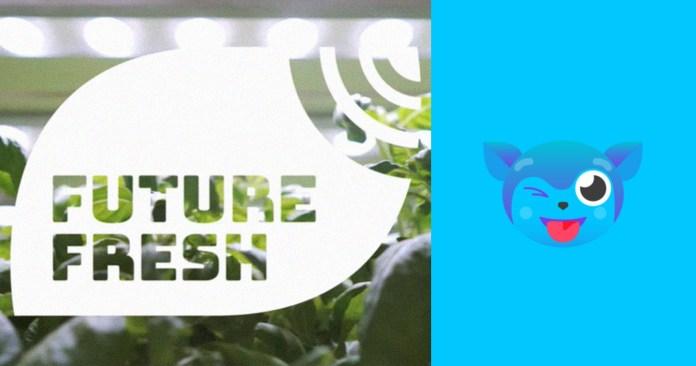 Digital: Manila's Local Urban Indoor Farm, Future Fresh, to Do Live E-Commerce Stream on KUMU