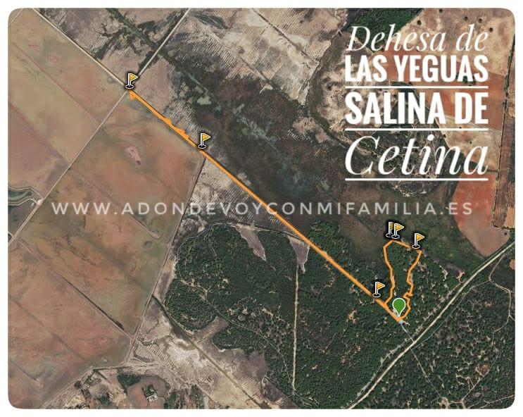 mapa-sendero-dehesa-de-las-yeguas-salina-de-cetina-adondevoyconmifamilia