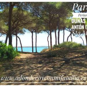 pinar dunas de san anton portada adondevoyconmifamilia 01