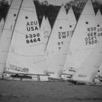 Sail, Sailing, SSL, Star Sailors League, Hamburg, City Grand Slam, Lake Alster, Norddeutscher Regatta Verein, Crew, Sport, Outdoor, Regatta