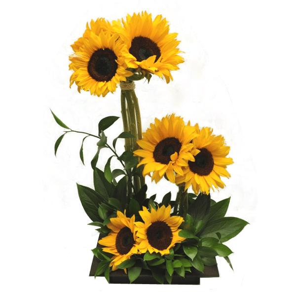 Arreglo Floral Girasol Recien Nacido Flores a domicilio en