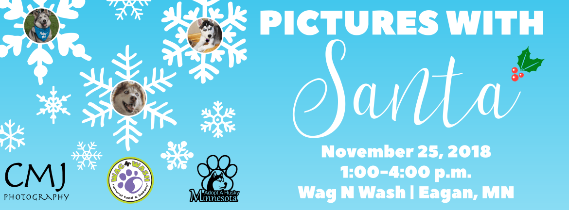 Pictures with Santa at Wag N' Wash