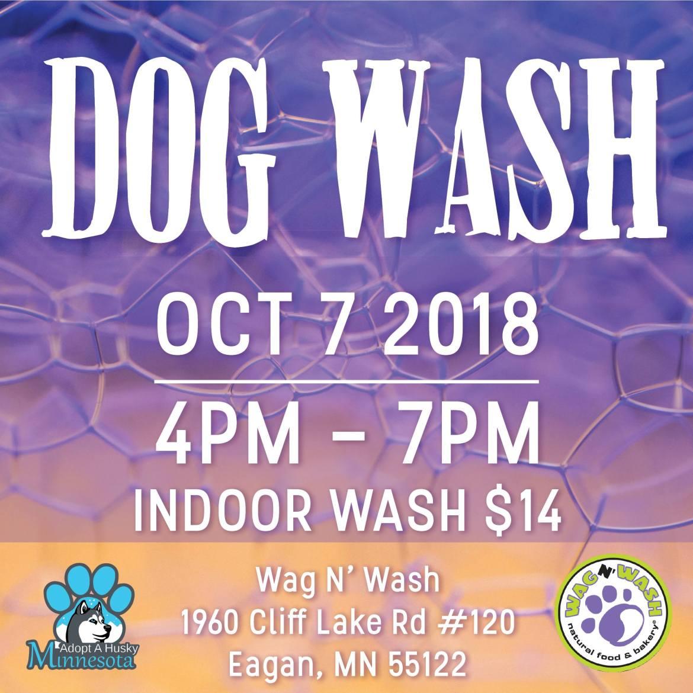 Dog Wash at Wag N' Wash