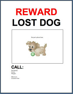 free template lost or found pet flyer