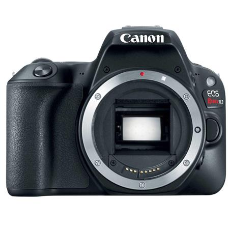 Canon SL2: Picture 1 regular