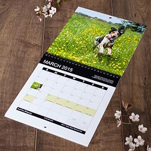 Centerfold Calendar