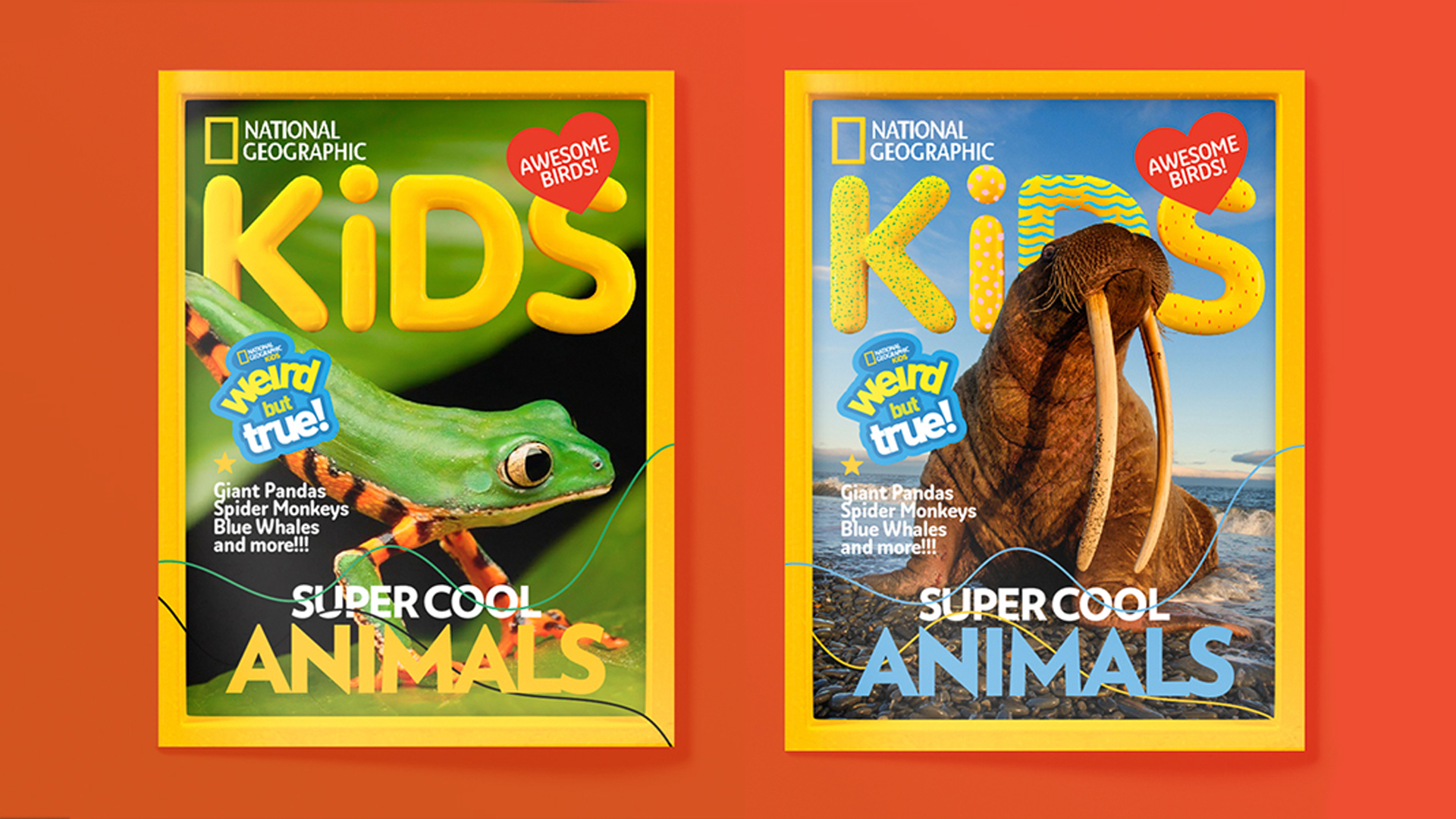 Build a brand for National Geographic Kids