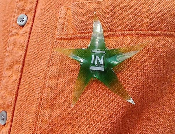 vote in badge