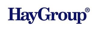 Logo HayGroup