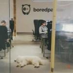 5 Questions with Justina Palinavičiūtė, Head of Ad Ops at Bored Panda
