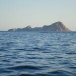 ADRASAN KOYLARI - Sulu Ada Yüz Şekli