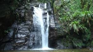 Trilha da Cachoeira do Horto - Cachoeira do Chuveiro