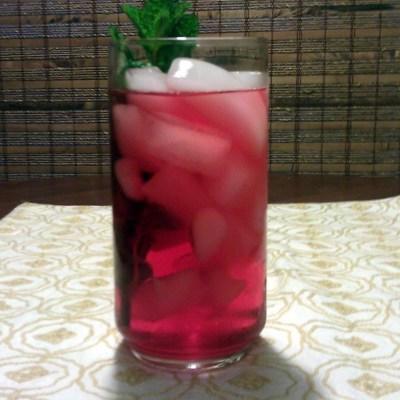 Cranberry Mojito Mendoza Style