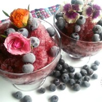 Chateau La Paws Blueberry Granita