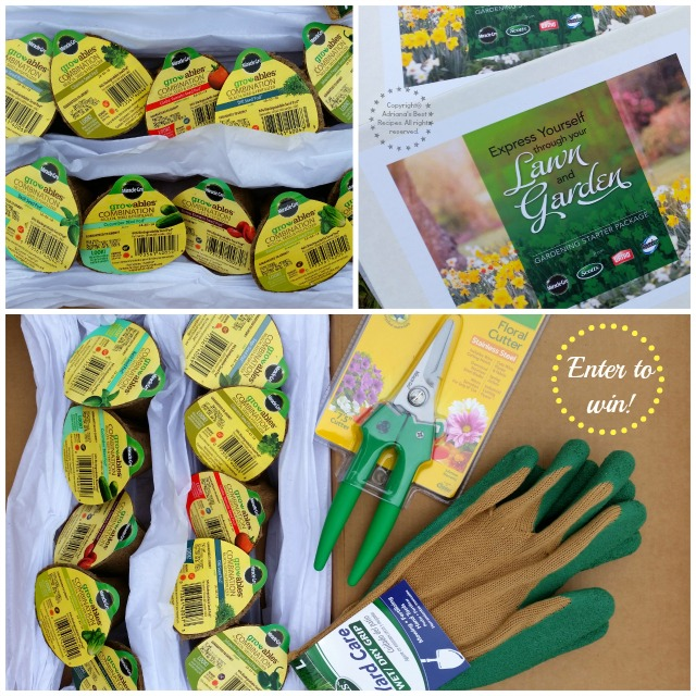 Giving away TWO sets for you to plant your own vegetable garden at home #MiJardinalidad #ad