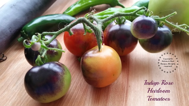 Indigo Rose Heirloom Tomatoes  #MiJardinalidad #ad