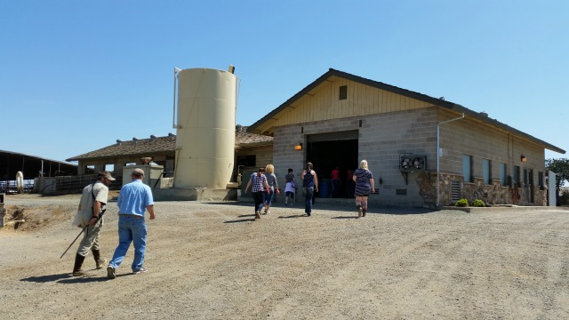 Touring New Hope Dairy Farm #TASTE15