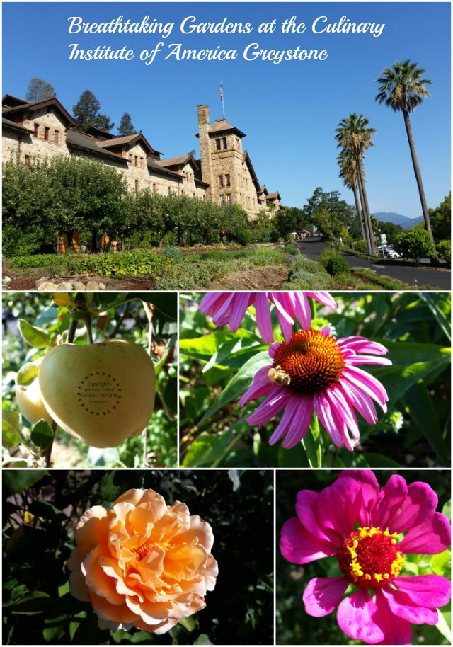 Breathtaking gardens at the Culinary Institute of America at Greystone #LittleChanges