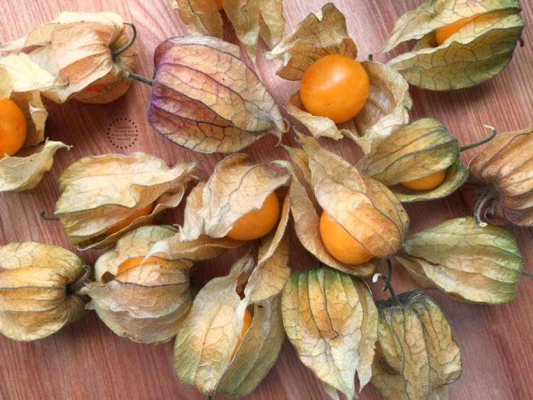 Fresh gooseberries also called golden berries