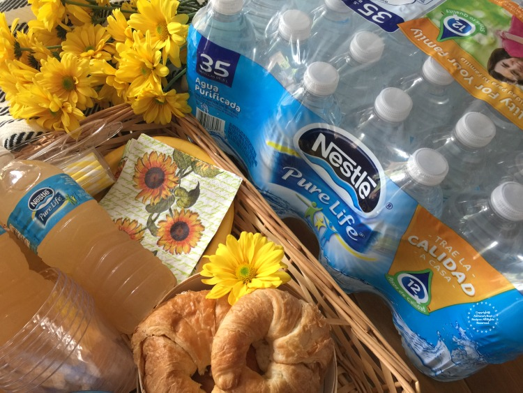Nestlé Pure Life is perfect addition to family picnics