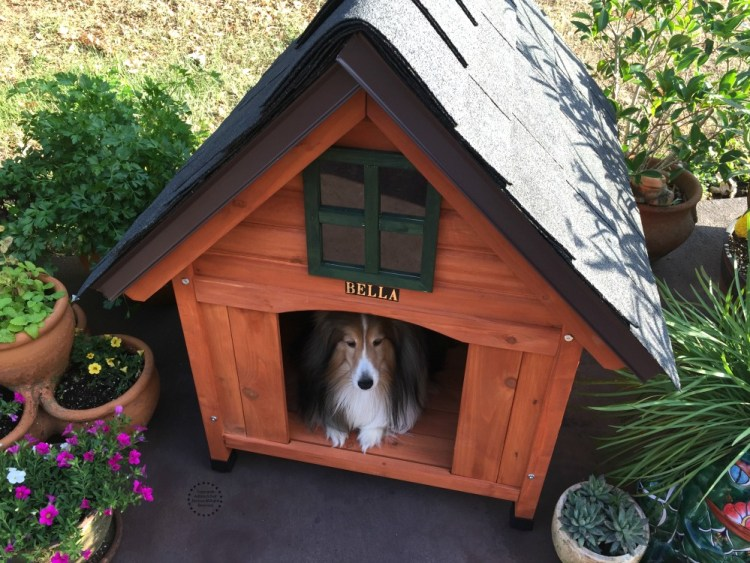 The best dog house is also personalized with the owners name