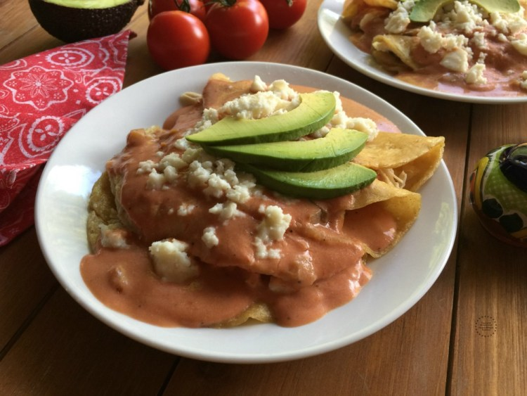 Creamy Tomato Enchiladas
