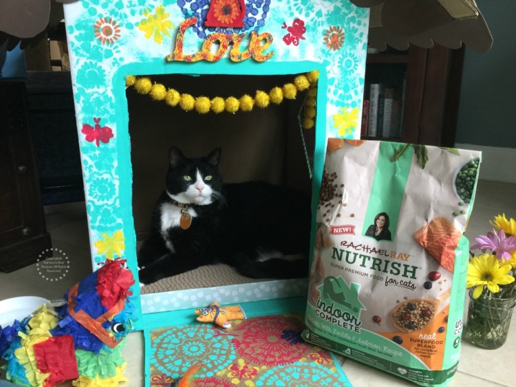 Indoor Cat Playhouse DIY, A Fun Project for Pampered Felines